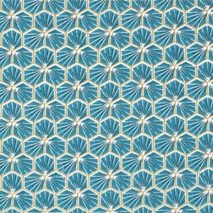 riad hexagone bleu roi